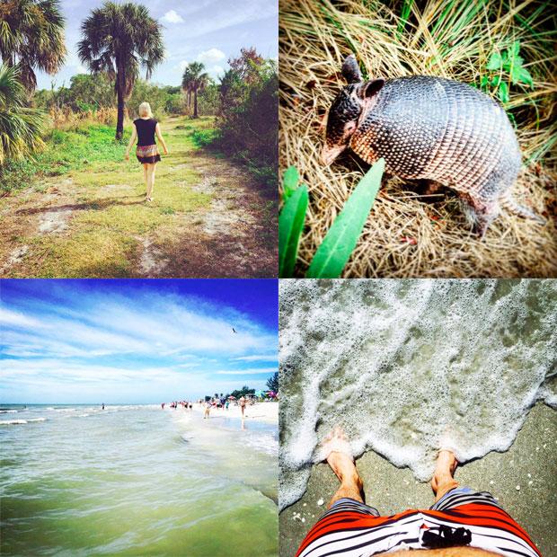 honeymoon_island_1